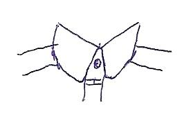 fliege welcher hemdkragen